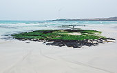 Beach the waves Juju