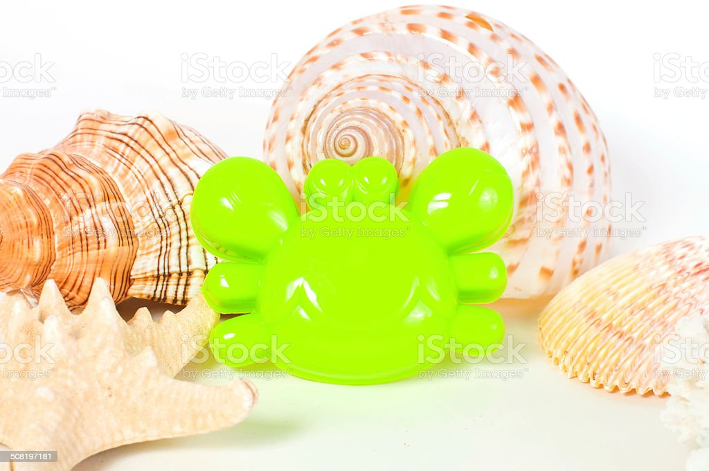 Beach toys and seashells stock photo