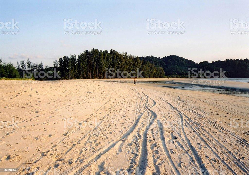 beach tracks stock photo