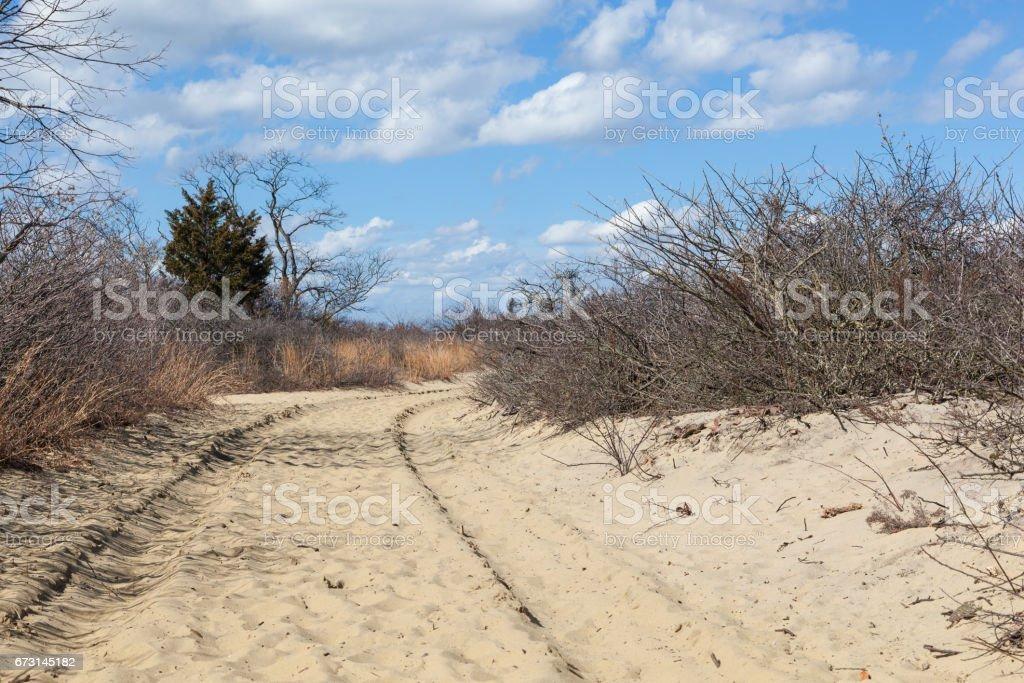 Beach Trail at Sandy Hook Gateway National Recreation Area stock photo