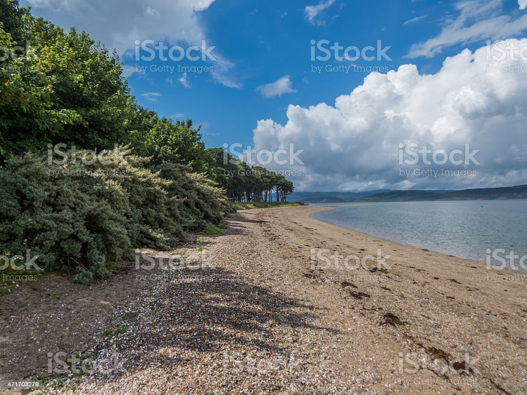 Beach, Trees and Cloud stock photo