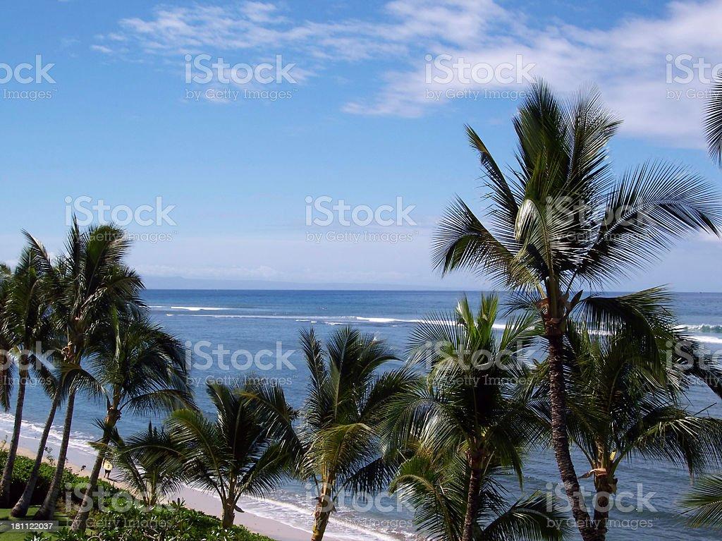 Beach View Maui royalty-free stock photo