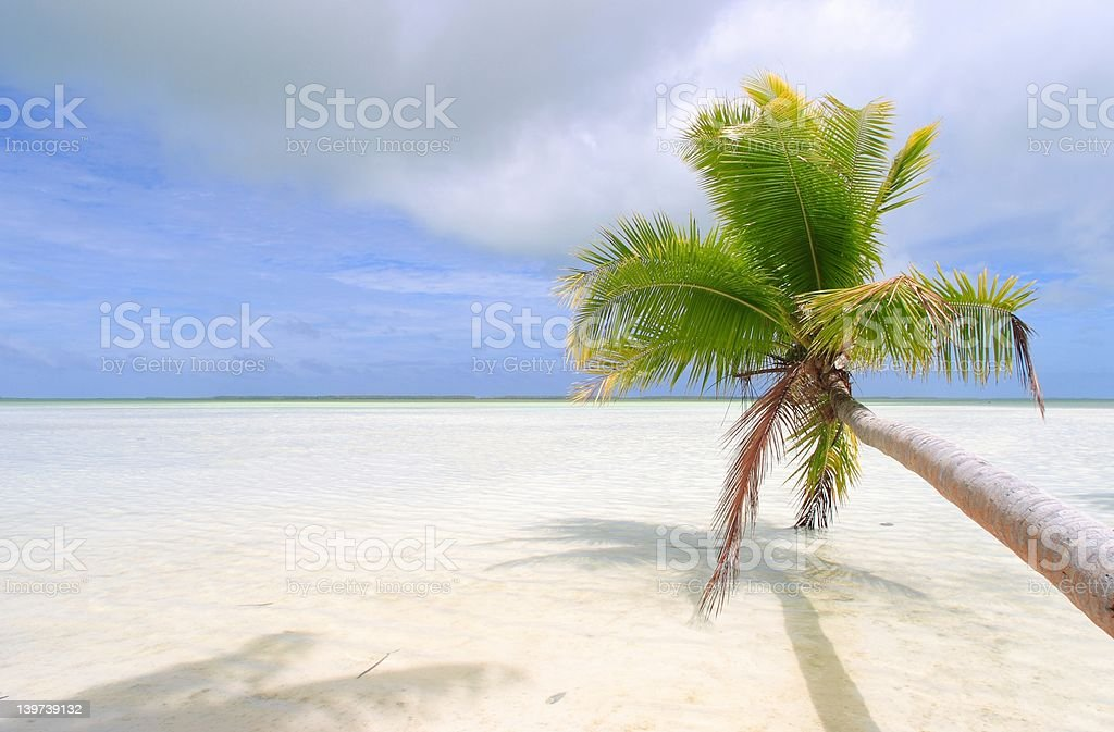 beach view stock photo