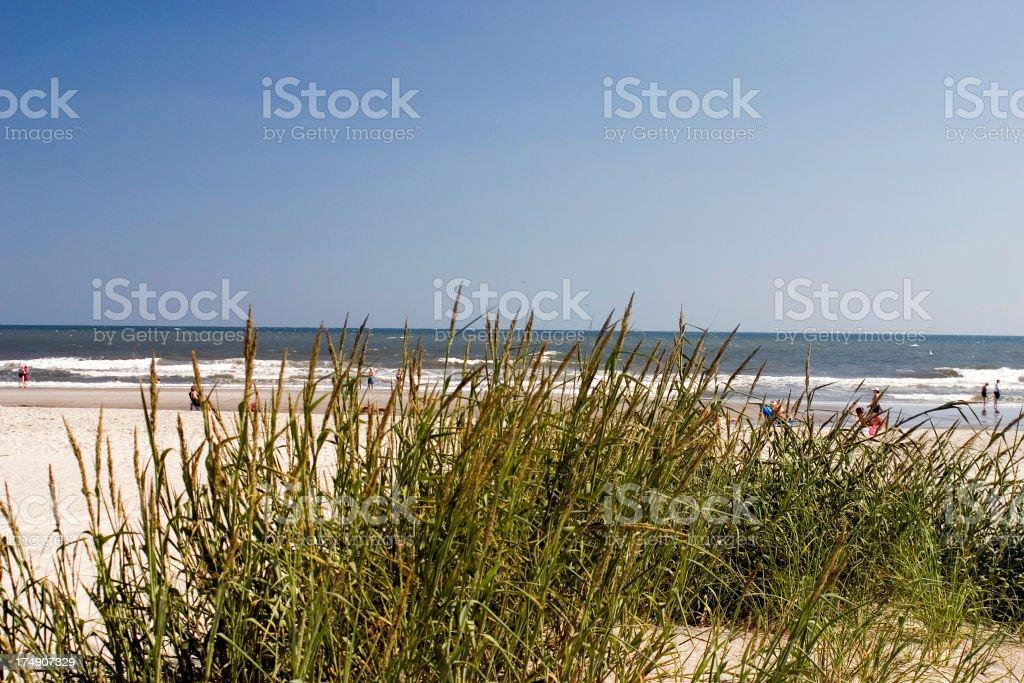 Beach View royalty-free stock photo