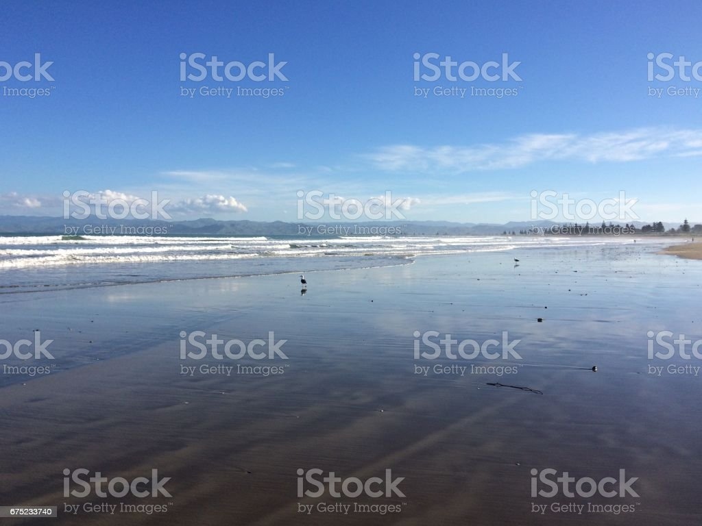 Beach view with 2 seagulls stock photo