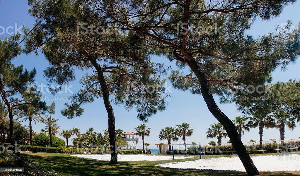 beach volley, tourism travel destination stock photo