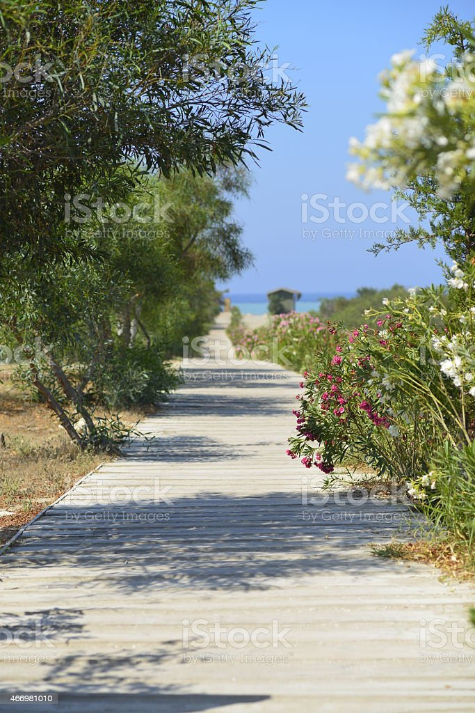 Beach way stock photo