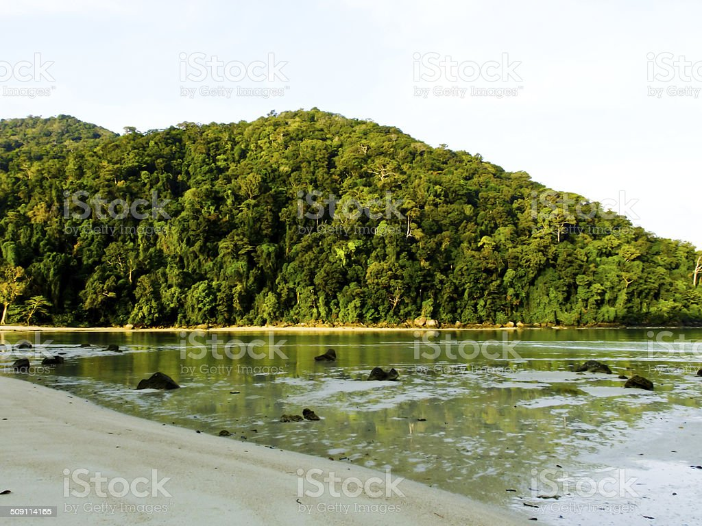 Beach when ebb tide and rainforest in Andaman sea, Thailand stock photo
