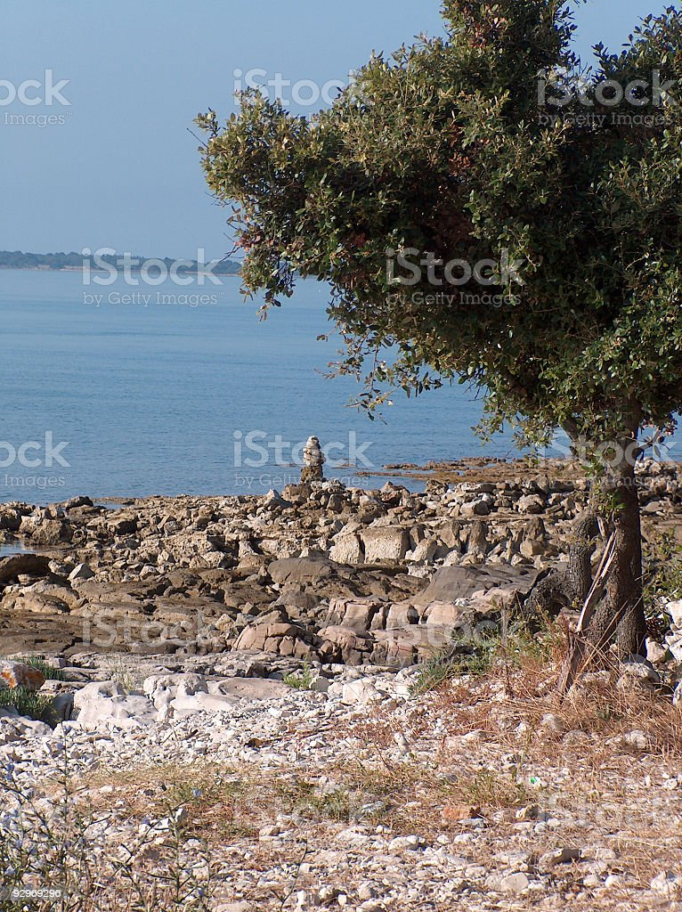 Beach with a tree stock photo