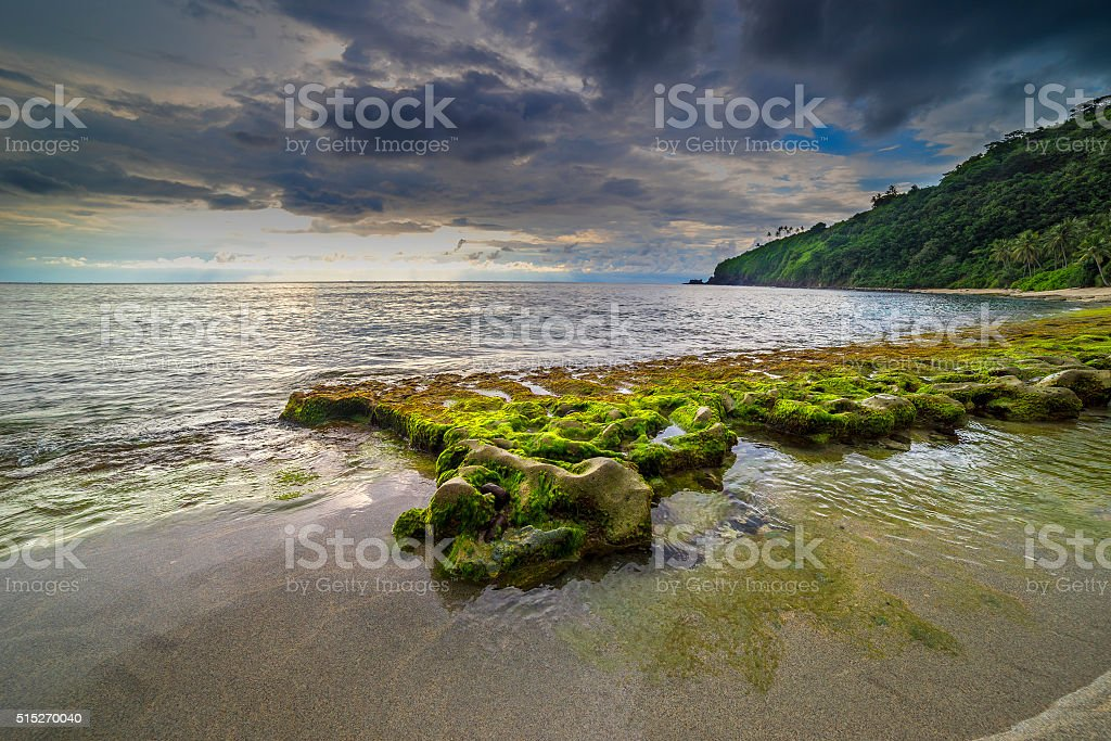 Beach with beautiful rock mosses stock photo