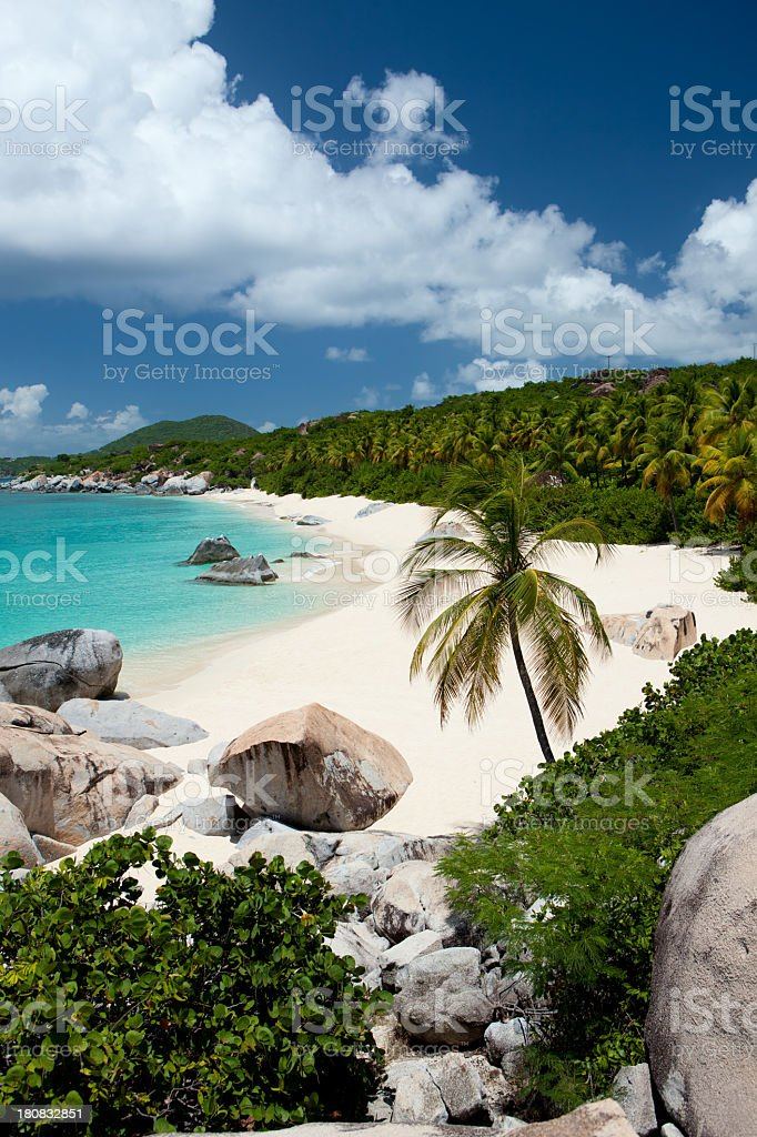 beach with boulders and palm trees in Virgin Gorda, BVI stock photo