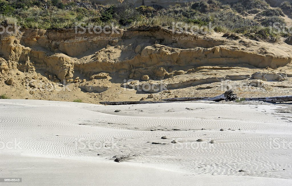 beach with dunes royalty-free stock photo