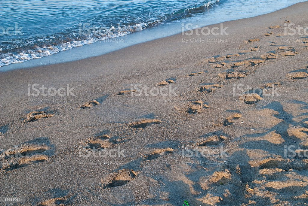 beach with footsteps in the morning stock photo