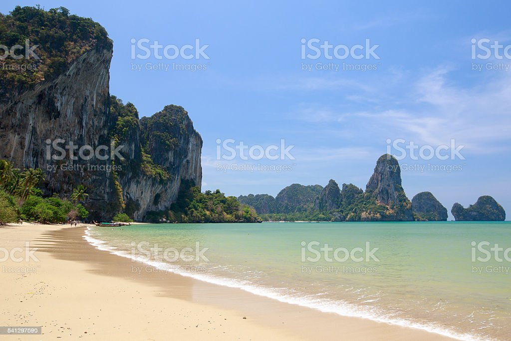 Beach with palm trees and rocks stock photo