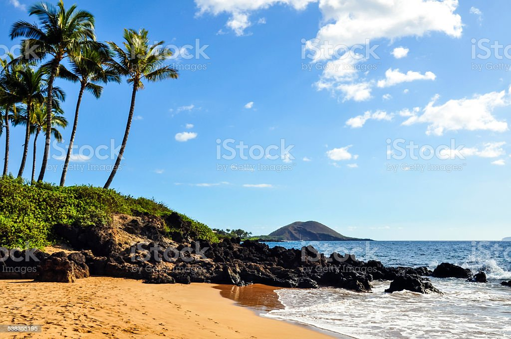 Beach with palm trees on Maui, Hawaii stock photo