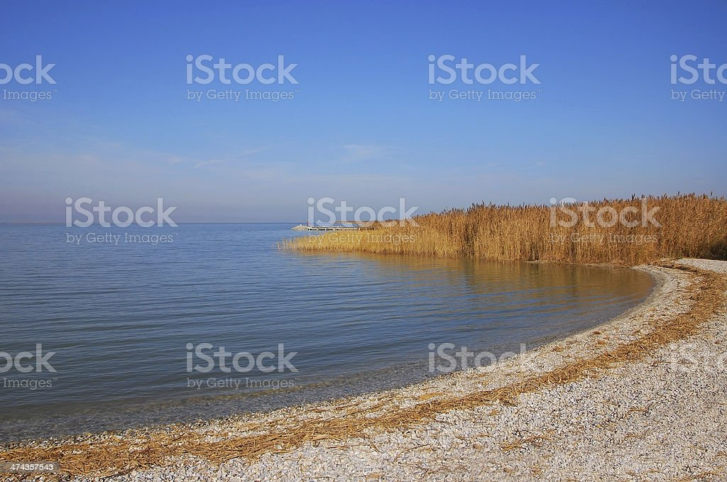 Beach with pebbles on the shore of Lake Neusiedl stock photo