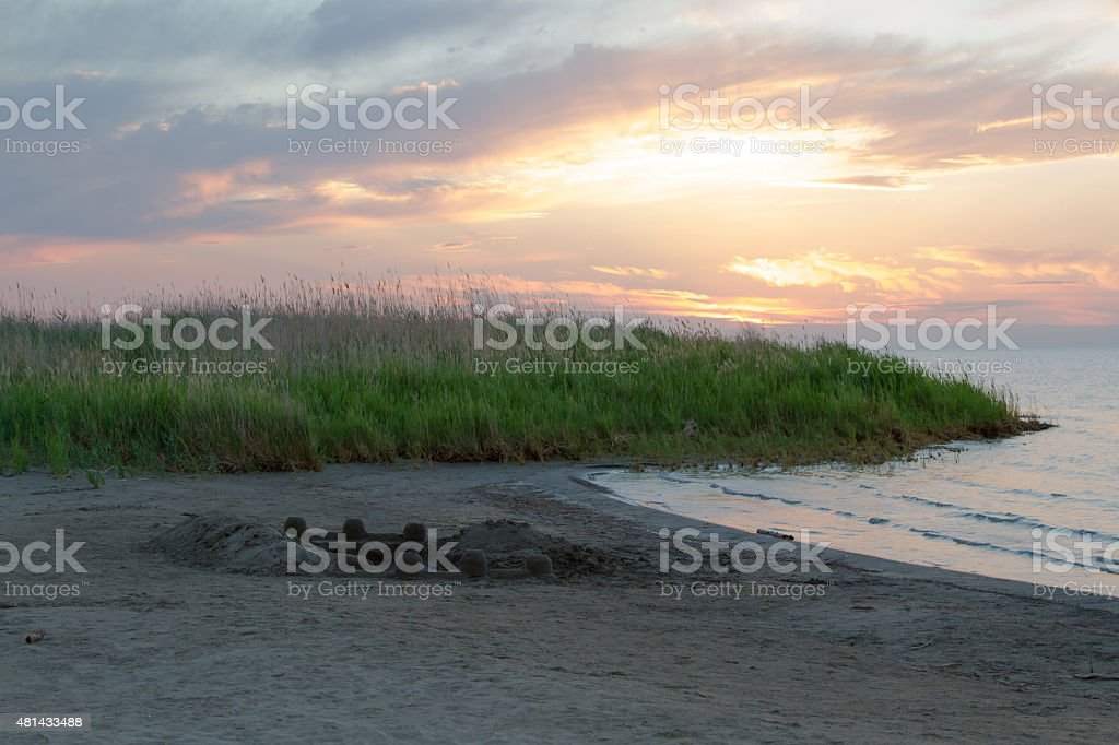 beach with reeds at sunset stock photo