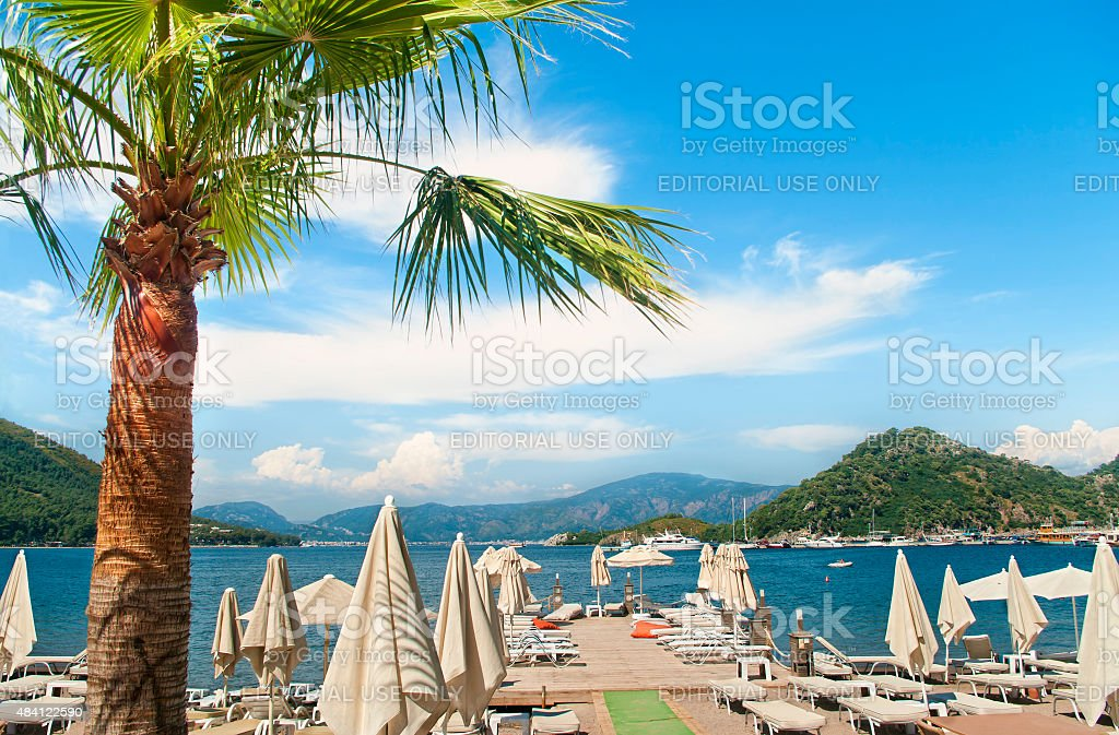 beach with sunbeds and sunshades and palm tree at foreground stock photo