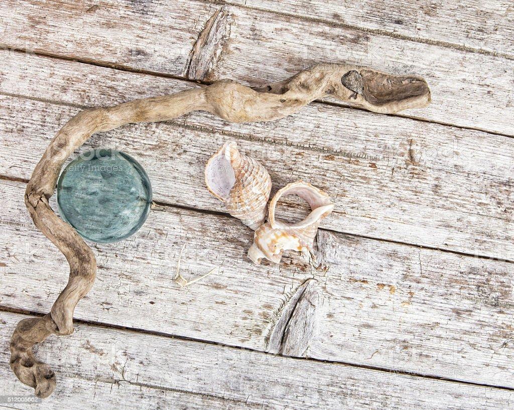 beachcombing treasures stock photo
