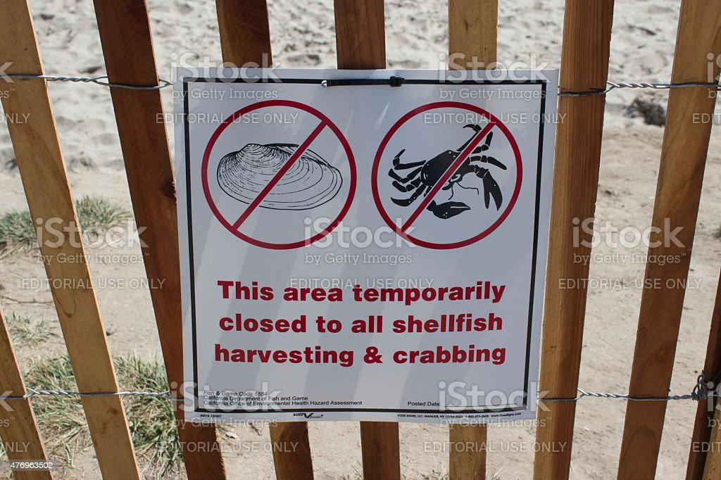 Beaches closed to crabbing due to Refugio oil spill stock photo