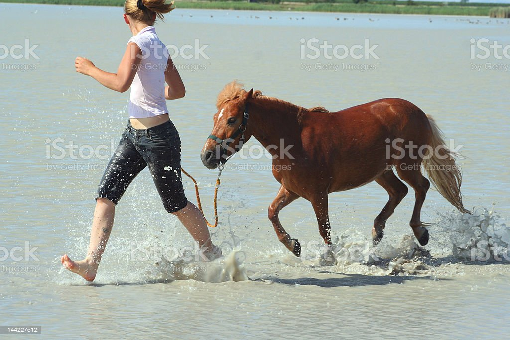 Beachgallop with a tiny little Pony royalty-free stock photo