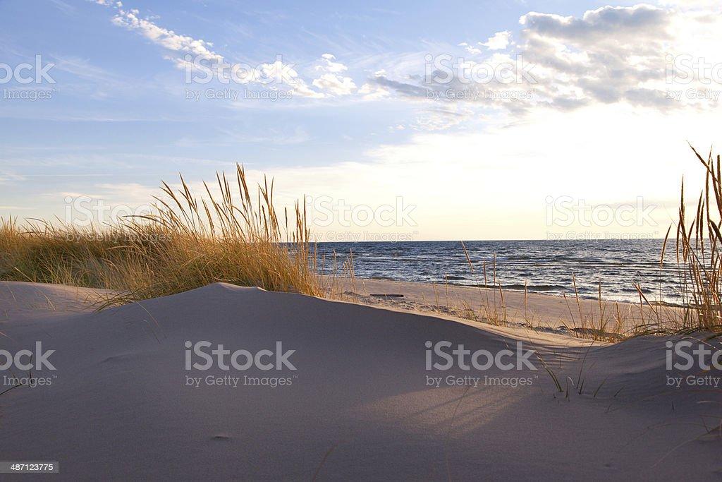 Beachgrass on the Lakeshore - Michigan, USA stock photo