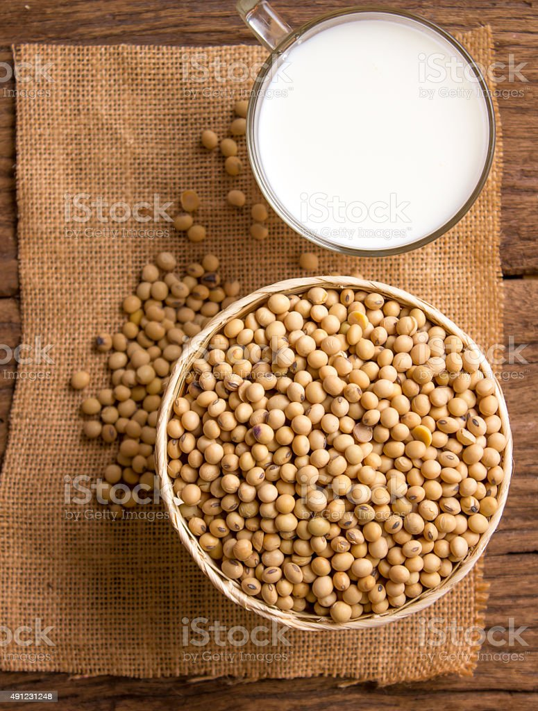 bean milk stock photo