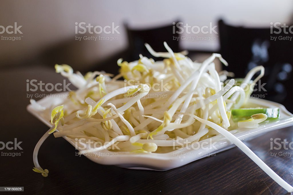 bean sprouts on plate royalty-free stock photo