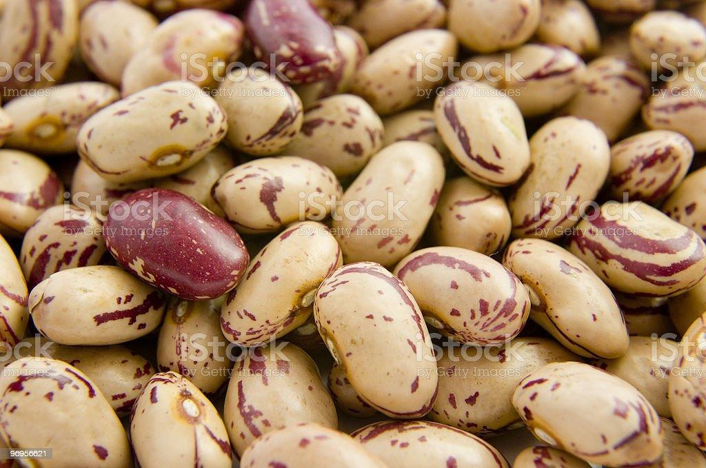 beans food vegetable grain royalty-free stock photo