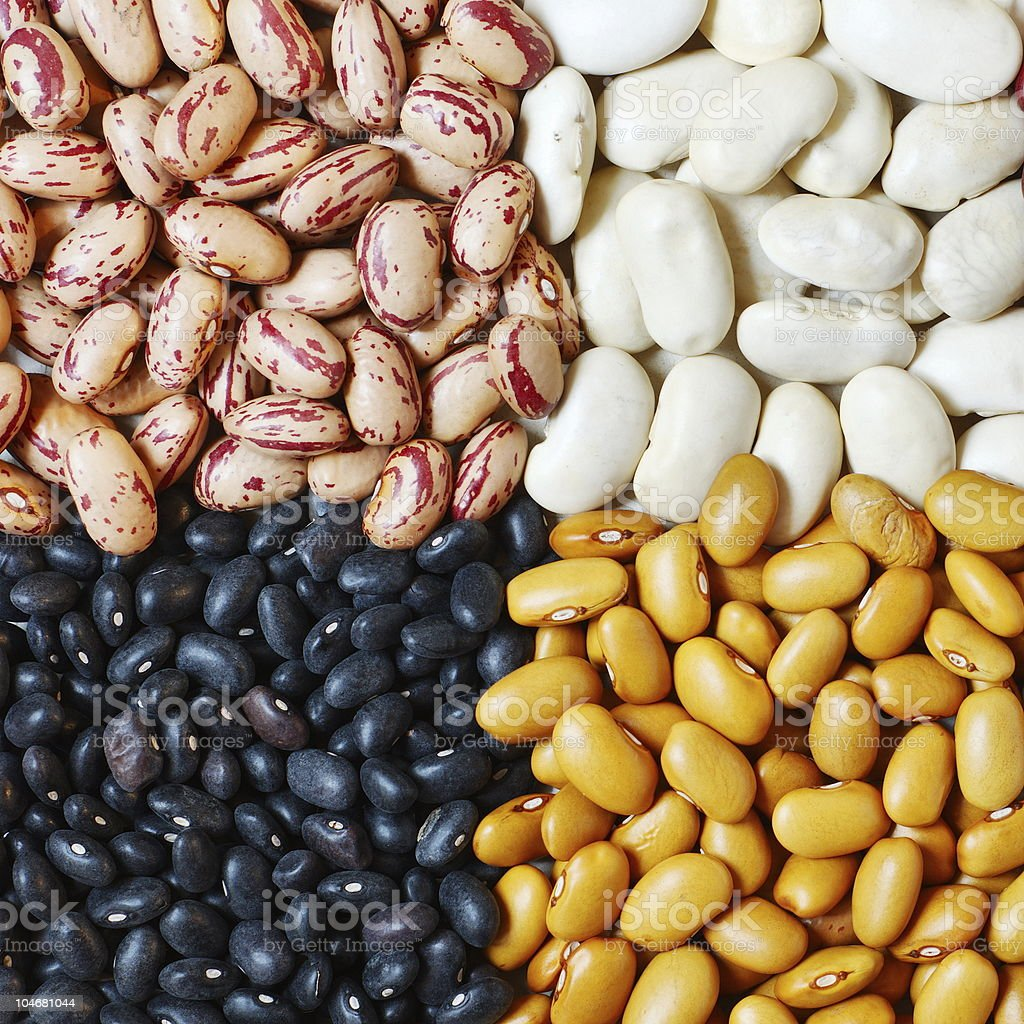 Beans in four colors royalty-free stock photo