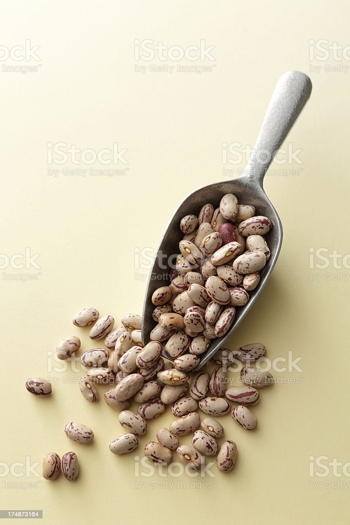 Beans: Pinto Bean royalty-free stock photo
