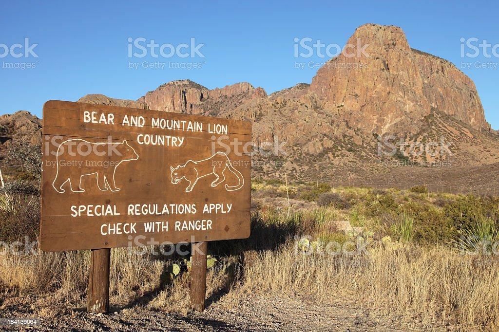 Bear and Cougar Warning Sign stock photo