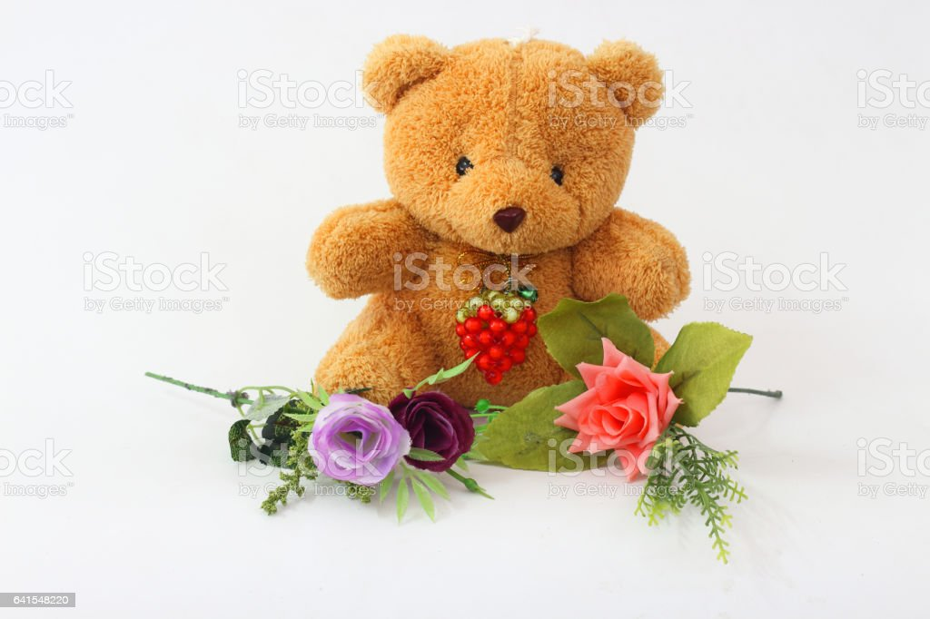 Bear brown and purple roses on a white background. stock photo