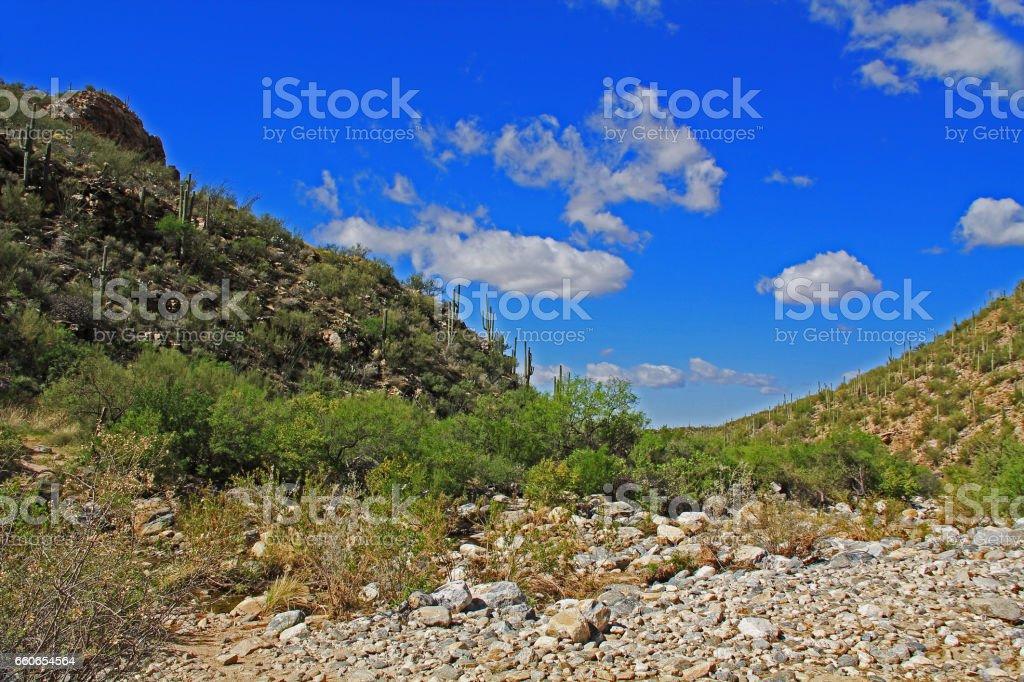 Bear Canyon in Tucson, AZ stock photo