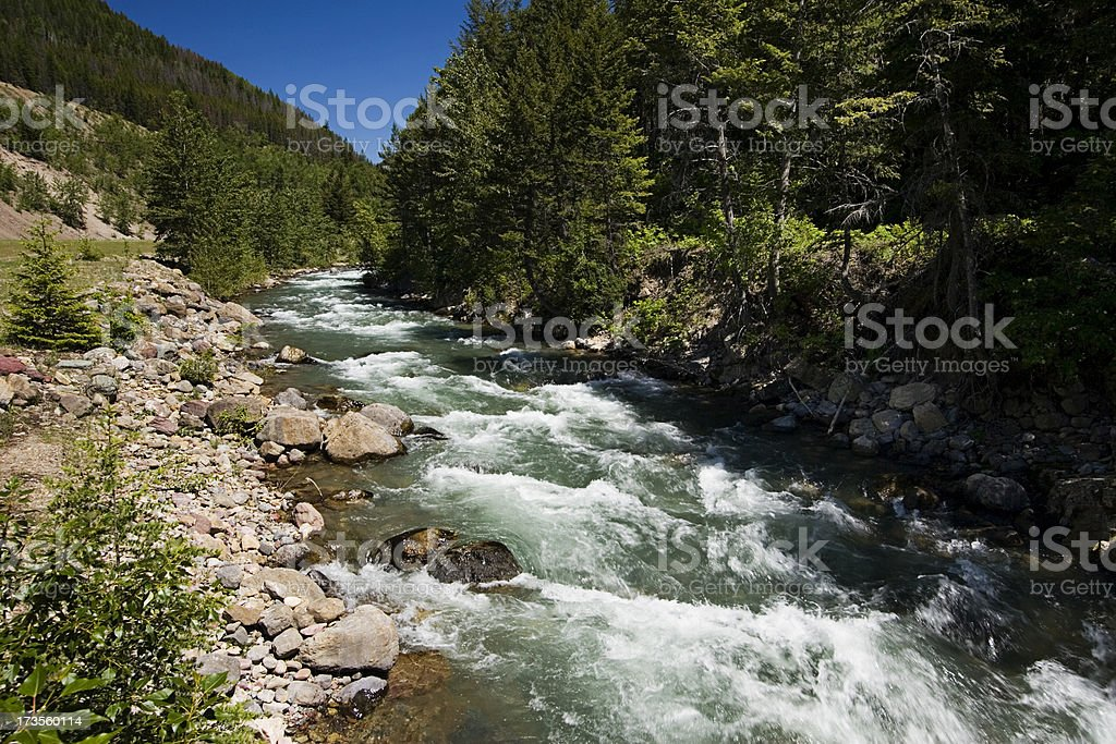 Bear Creek stock photo