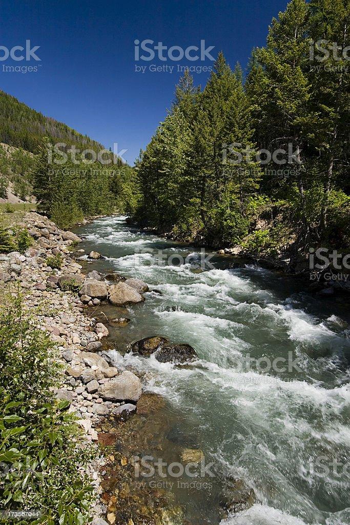 Bear Creek royalty-free stock photo