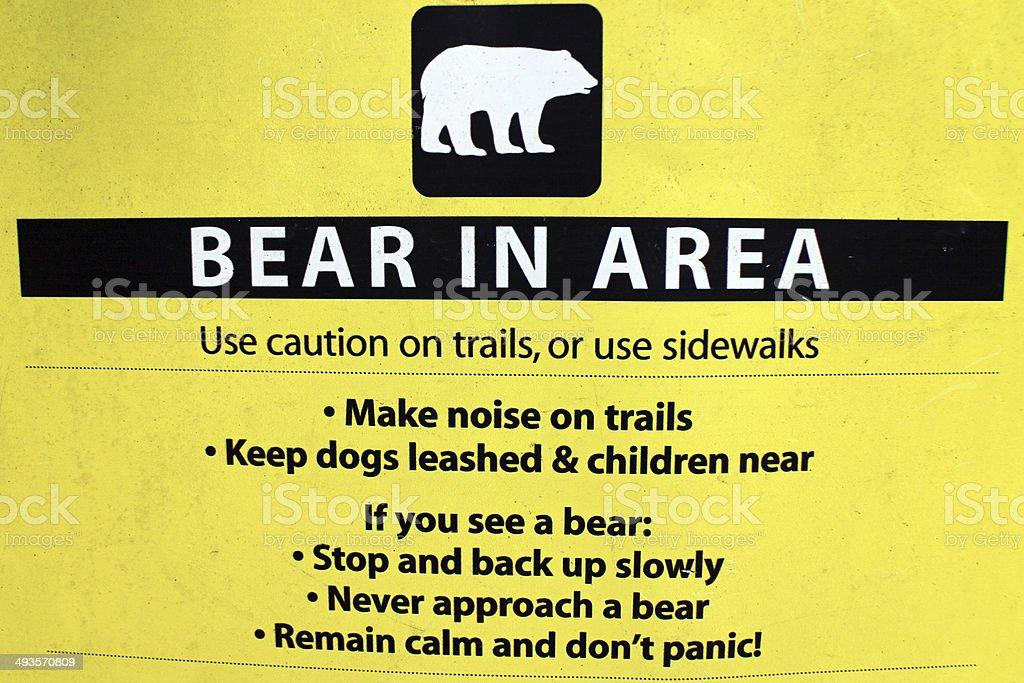 Bear in Area stock photo
