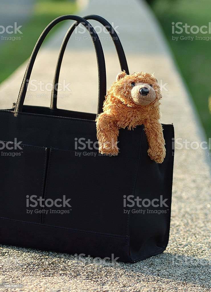 bear in purse royalty-free stock photo