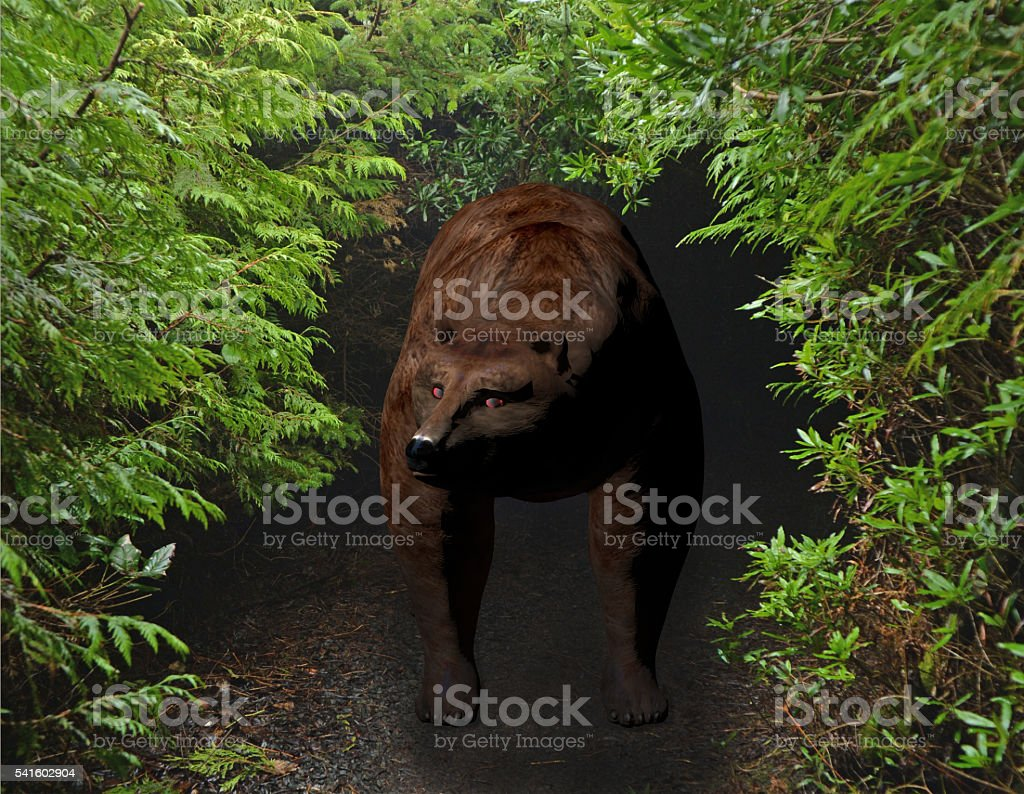 bear in the brush stock photo