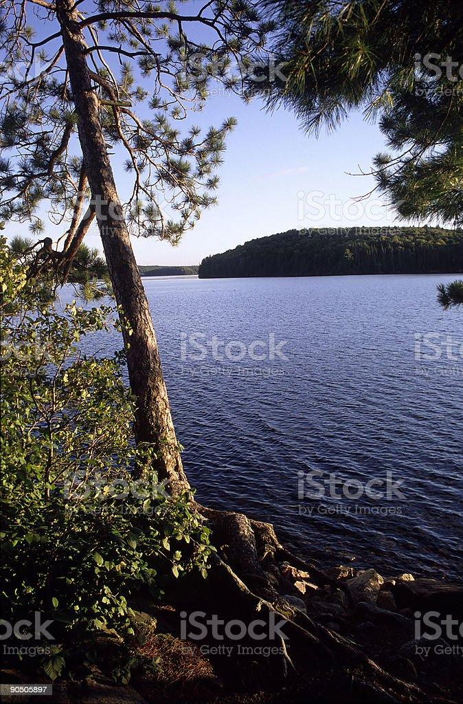 Bear Island in Algonquin Park Ontario Canada stock photo