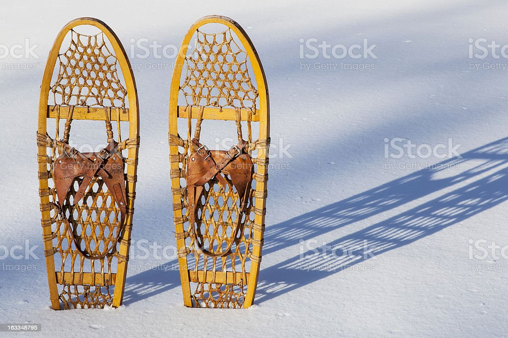 Bear Paw snowshoes stock photo