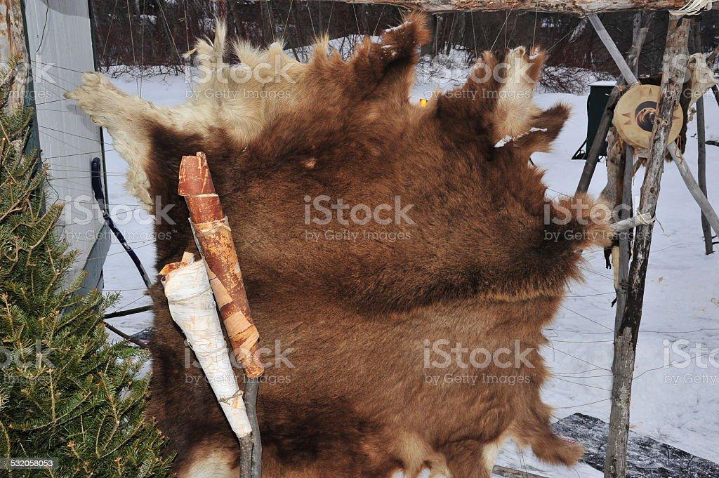 Bear skin stock photo