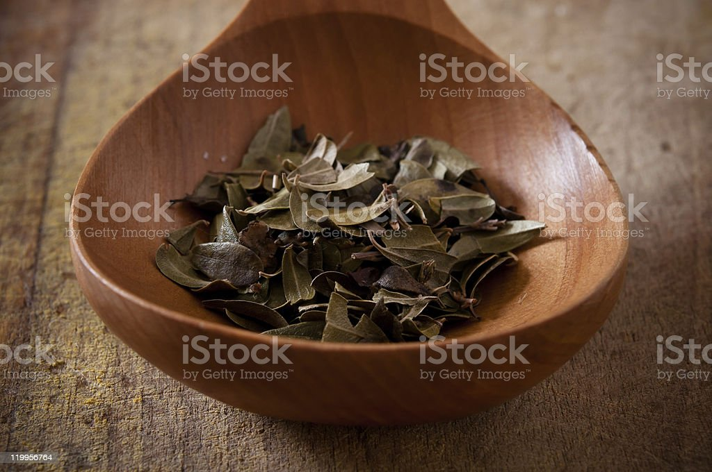 Bearberry leaves in a wooden spoon stock photo