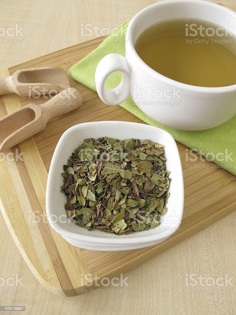 Bearberry leaves tea stock photo