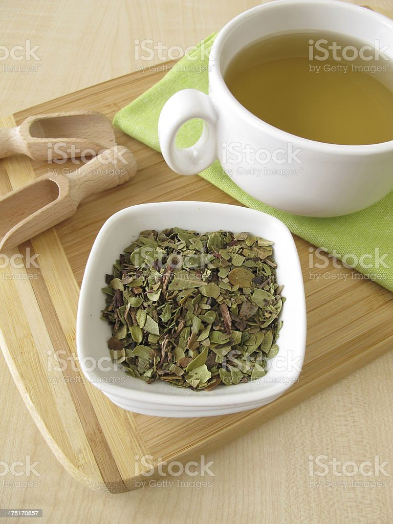 Bearberry leaves tea stock photo