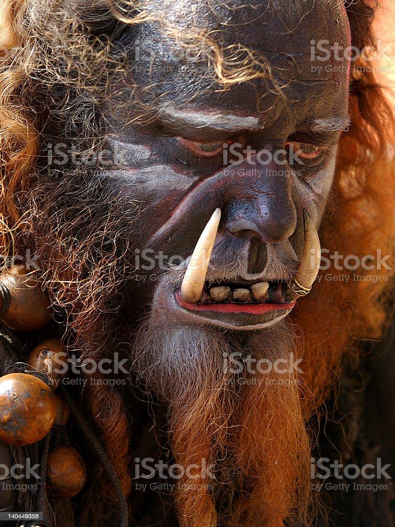 Bearded Aboriginal royalty-free stock photo