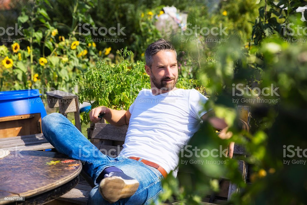 bearded man in urban garden stock photo