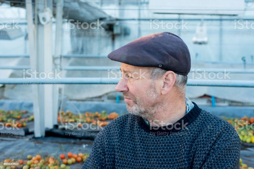 Bearded Old Man in Flat Cap Looking Away stock photo