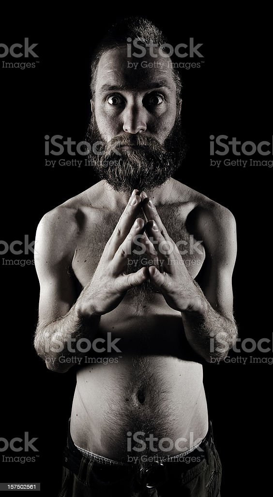 Bearded Portrait royalty-free stock photo