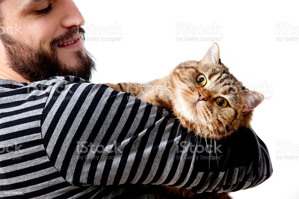 bearded young man embracing his beautiful cat on white background stock photo